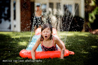 slip slide by monica carlson posted on the Click Pro Daily Proje