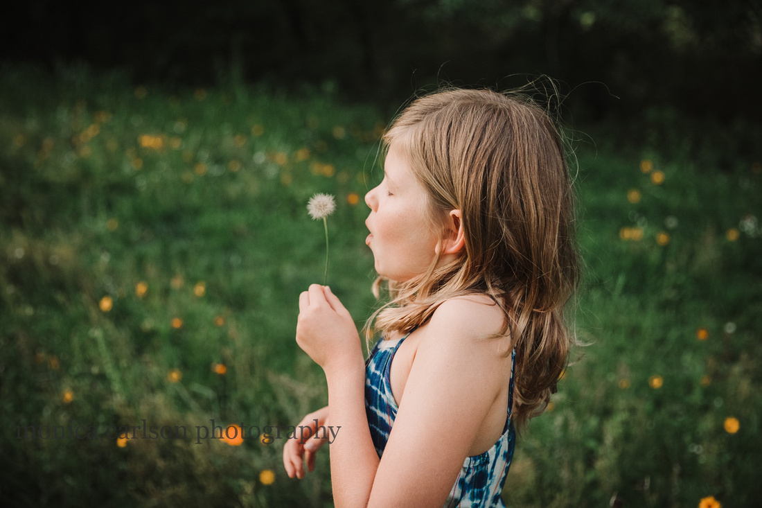 girl makes a wish on a dandelion on a flower field on prospect farms