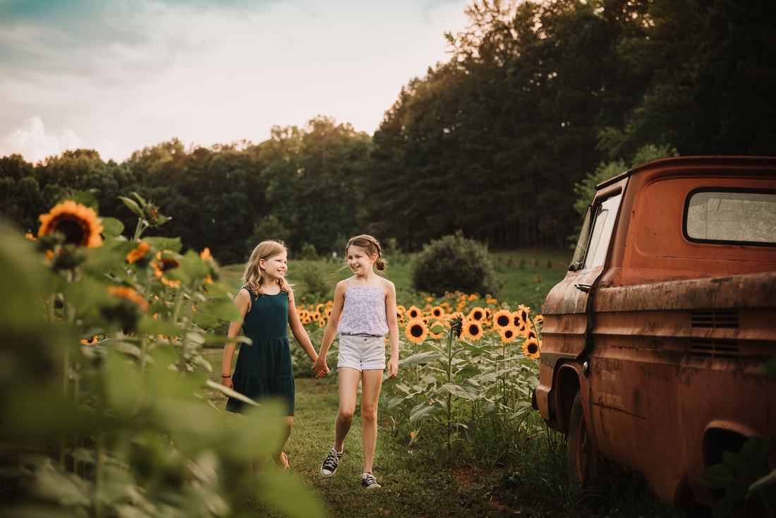 sister walking hand in hand through a field of sunflower past a old truck by monica carlson