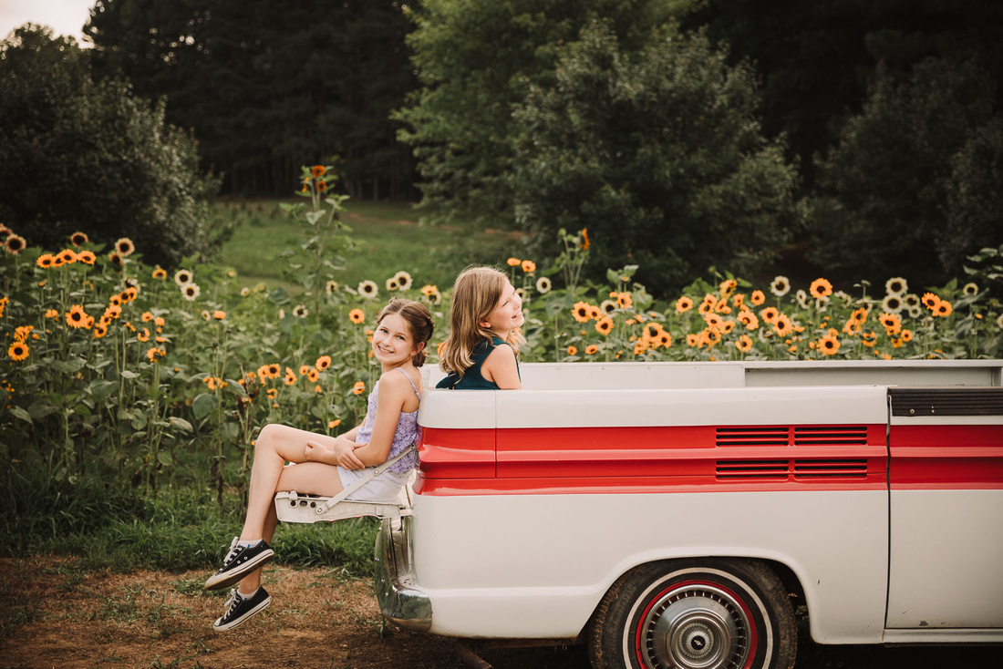 sisters laughing together in the back of truck in front a a field of sunflowers