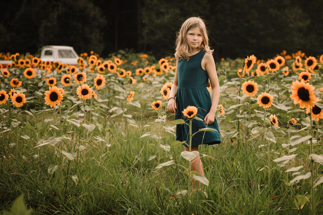 little girl looking back at the camera in a sunflower field by monica carlson