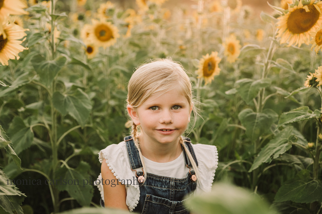 portrait of a blonde girl sitting in a sunflower field at prospect farms