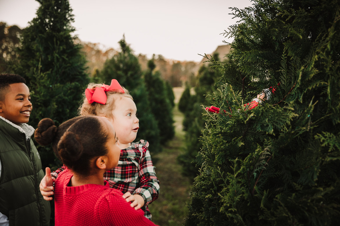 little girl looks with glee at a elf that is sitting in a christmas tree