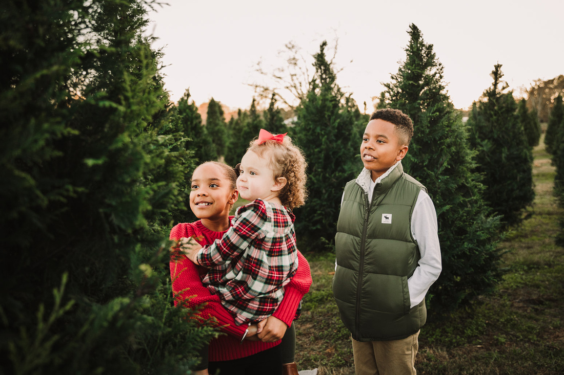 three siblings dressed for the holidays look at a elf that is in a christmas tree