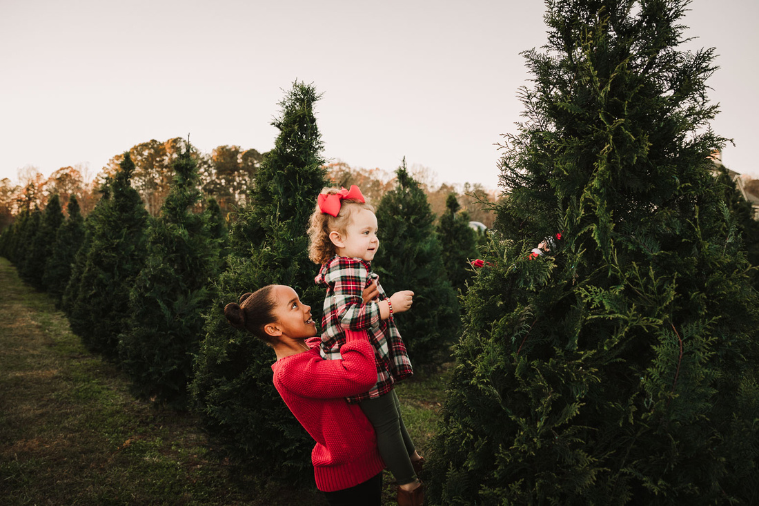 tween sister picks up toddler so she can better see a elf that is in a christmas tree