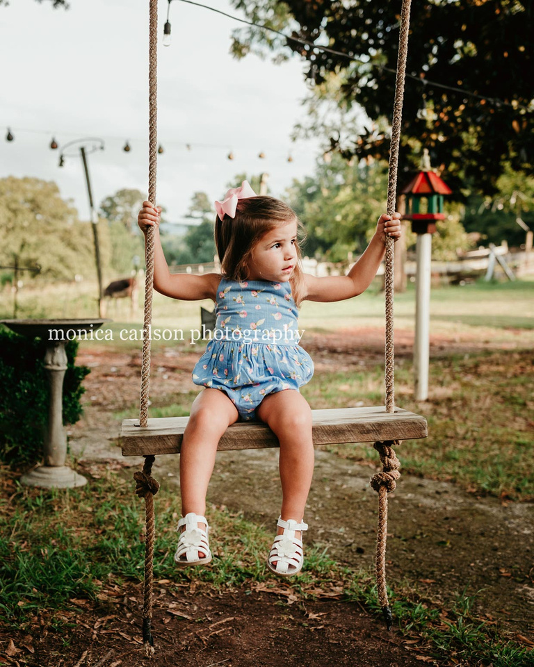 young girl sitting on a wooden tree swing during a photo session