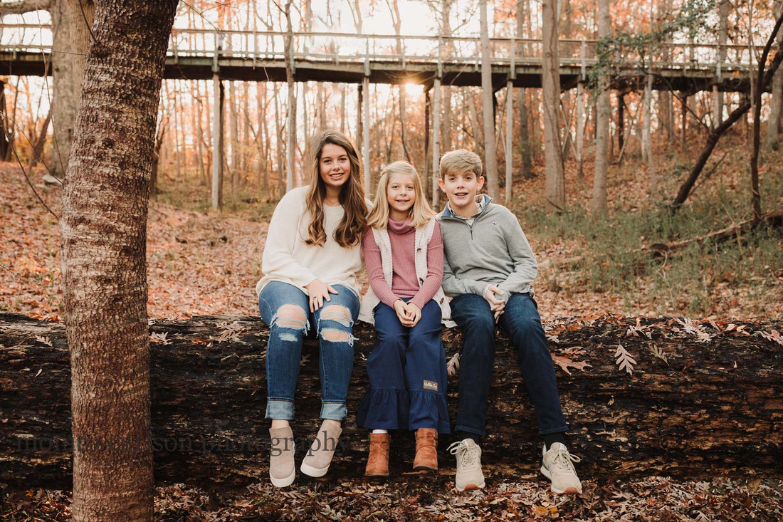 golden portrait of three siblings sitting on a fallen log with a bridge behind them taken by monica carlson