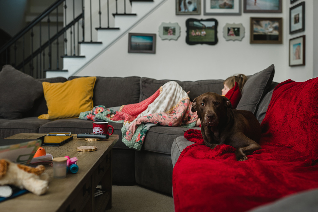 dog and girl laying on a couch