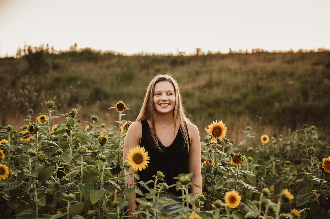 backlit image of a high school senior in a field of sunflowers