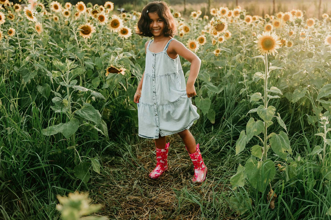 happy elementary aged girl stands among sunflowers by monica carlson