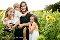 anderson sunflowers by by  monica carlson photography