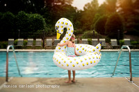 swan lake by monica carlson posted on the Click Pro Daily Projec