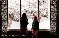winter wonderland by monica carlson posted on the Click Pro Dail