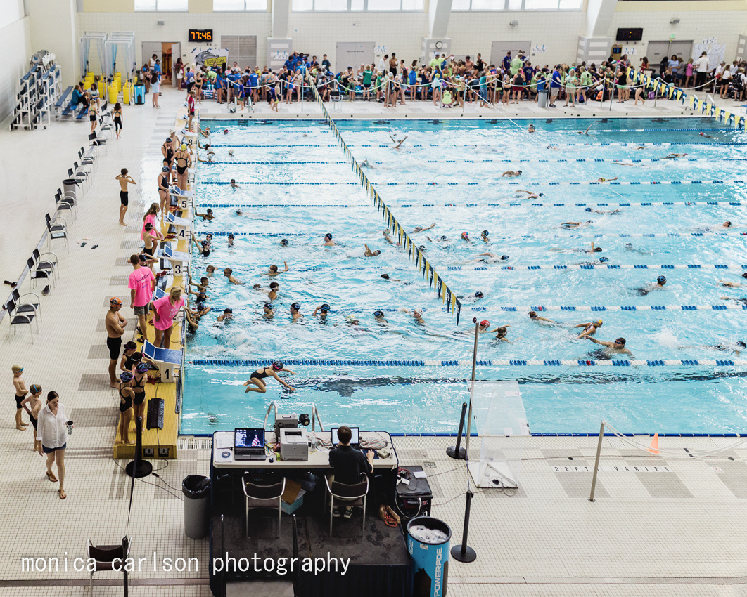Swim County by monica carlson posted on the Click Pro Daily Proj