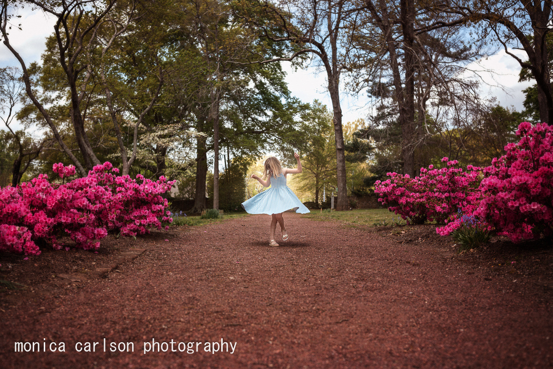 spring monica carlson posted on the Click Pro Daily Project, a g